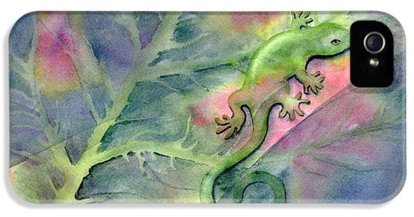 Salamanders iPhone 5s Case - Chameleon by Amy Kirkpatrick