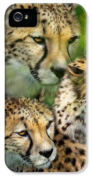 Cheetah Moods IPhone 5s Case by Carol Cavalaris