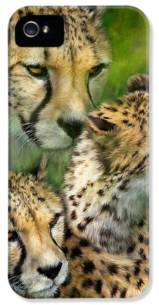 Cheetah Moods IPhone 5s Case by Carol Cavalaris