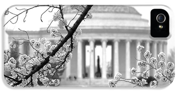 Cherry Tree And Jefferson Memorial Elegance  IPhone 5s Case