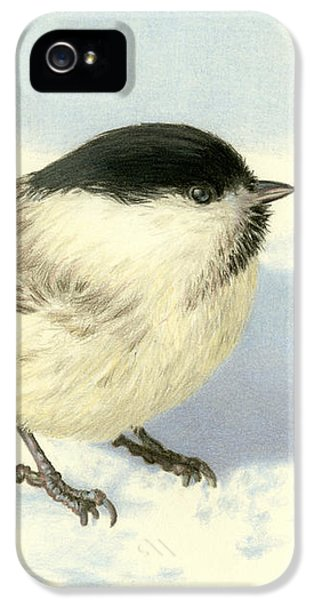 Chilly Chickadee IPhone 5s Case by Sarah Batalka