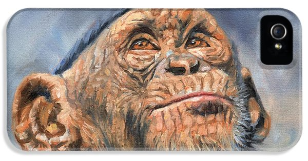 Chimp IPhone 5s Case by David Stribbling
