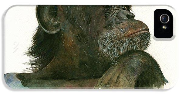 Chimp Portrait IPhone 5s Case