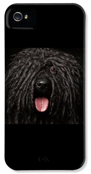 Dog iPhone 5s Case - Close Up Portrait Of Puli Dog Isolated On Black by Sergey Taran