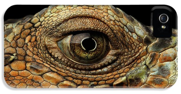 Closeup Eye Of Green Iguana, Looks Like A Dragon IPhone 5s Case by Sergey Taran