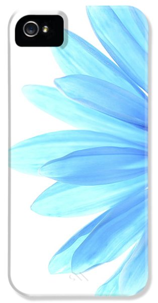 Daisy iPhone 5s Case - Color Me Blue by Rebecca Cozart