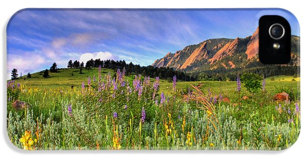 Landscapes iPhone 5s Case - Colorado Wildflowers by Scott Mahon