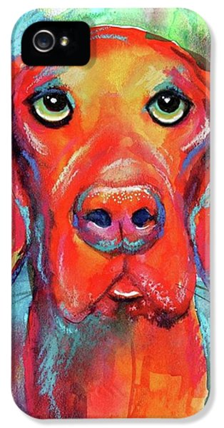 iPhone 5s Case - Colorful Vista Dog Watercolor And Mixed by Svetlana Novikova