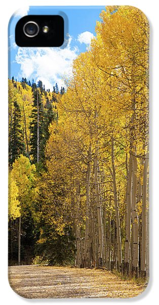 IPhone 5s Case featuring the photograph Country Roads by David Chandler