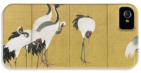 Cranes IPhone 5s Case by Maruyama Okyo