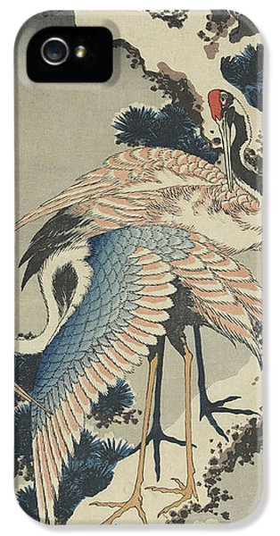 Cranes On Pine IPhone 5s Case by Hokusai