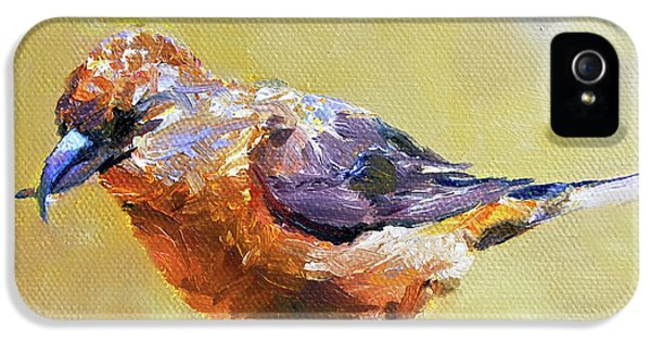 Crossbill IPhone 5s Case by Jan Hardenburger