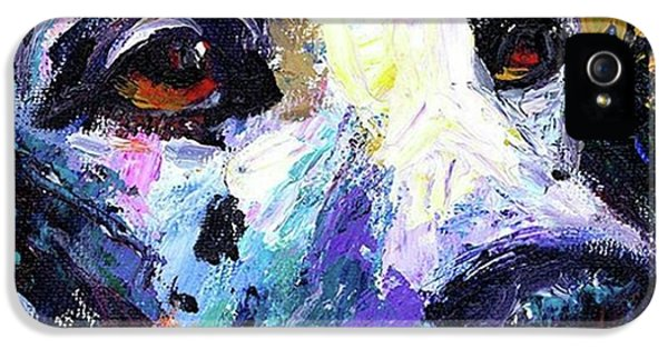 iPhone 5s Case - Dalmatian Dog Close-up Painting By by Svetlana Novikova