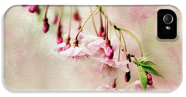IPhone 5s Case featuring the photograph Delicate Bloom by Jessica Jenney