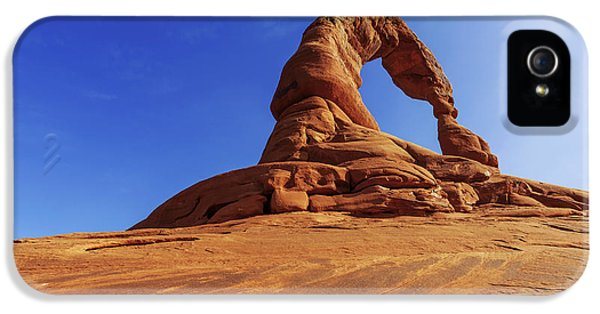 Delicate Perspective IPhone 5s Case by Chad Dutson