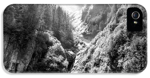 Dick Goodman iPhone 5s Case - Denali National Park 2 by Dick Goodman