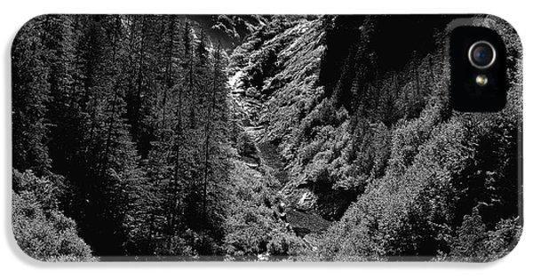 Dick Goodman iPhone 5s Case - Denali National Park 3 by Dick Goodman