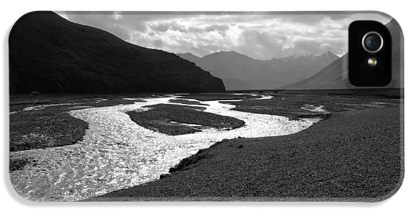 Dick Goodman iPhone 5s Case - Denali National Park 5 by Dick Goodman