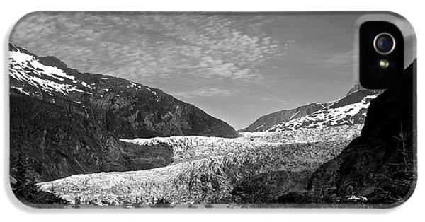 Dick Goodman iPhone 5s Case - Denali National Park 6 by Dick Goodman