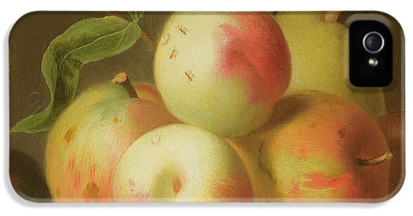 Detail Of Apples On A Shelf IPhone 5s Case by Jakob Bogdany
