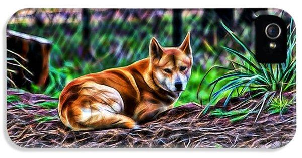 Dingo From Ozz IPhone 5s Case by Miroslava Jurcik