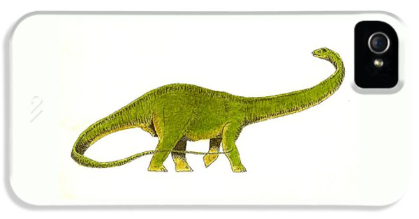 Diplodocus IPhone 5s Case