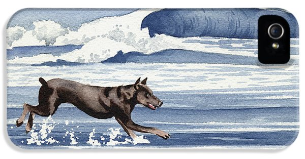 Doberman At The Beach  IPhone 5s Case by David Rogers