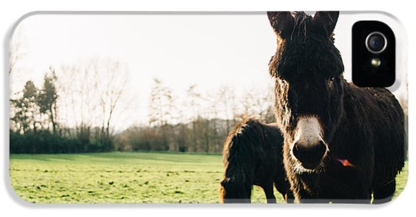 Donkey And Pony IPhone 5s Case