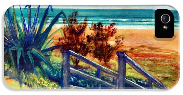 Down The Stairs To The Beach IPhone 5s Case by Winsome Gunning