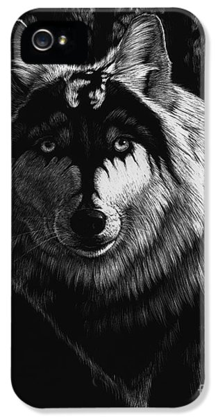 Dragon iPhone 5s Case - Dragon Wolf by Stanley Morrison