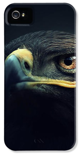 Eagle IPhone 5s Case by Zoltan Toth