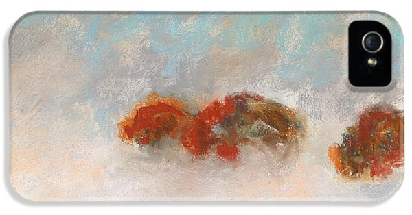 Early Morning Herd IPhone 5s Case by Frances Marino
