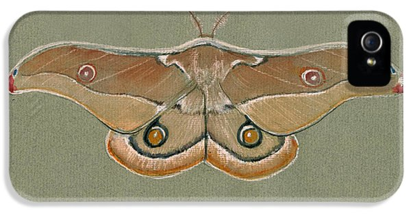 Hawk iPhone 5s Case - Emperor Gum Moth by Juan Bosco