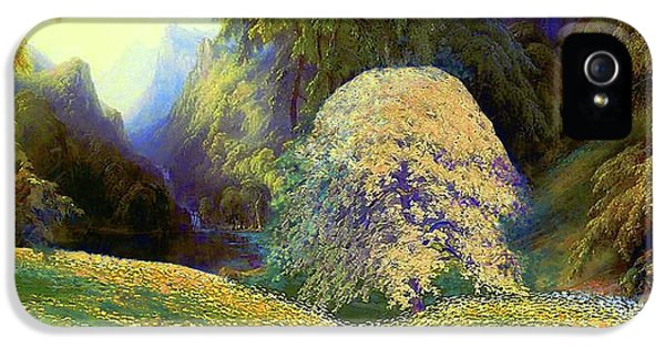 Enchanted By Daisies, Modern Impressionism, Wildflowers, Silver Birch, Aspen IPhone 5s Case