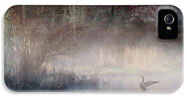 IPhone 5s Case featuring the photograph Ethereal Goose by Bill Wakeley