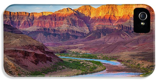 Grand Canyon iPhone 5s Case - Evening At Cardenas by Inge Johnsson