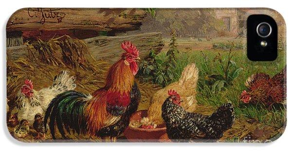 Farmyard Chickens IPhone 5s Case by Carl Jutz