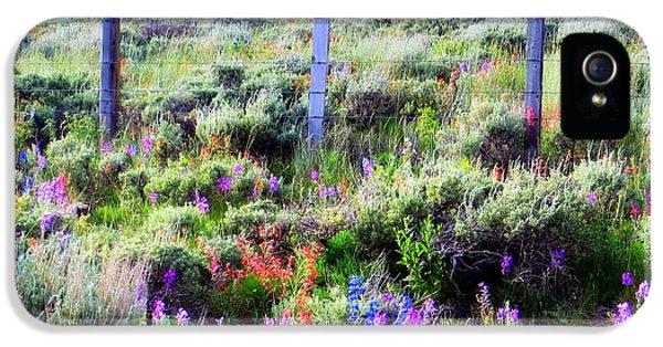 Field Of Wildflowers IPhone 5s Case by Karen Shackles