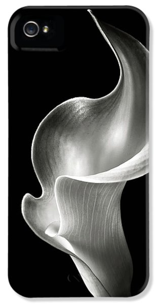 Lily iPhone 5s Case - Flame Calla Lily In Black And White by Endre Balogh