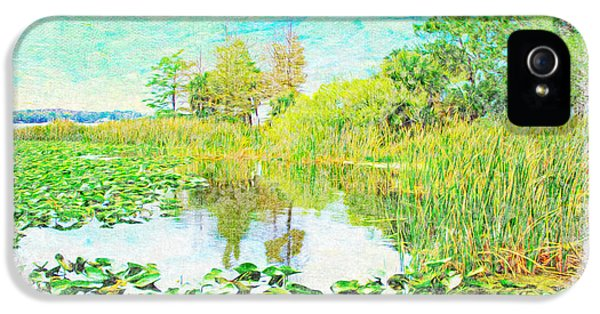 Florida State iPhone 5s Case - Florida Wetlands by Laura D Young