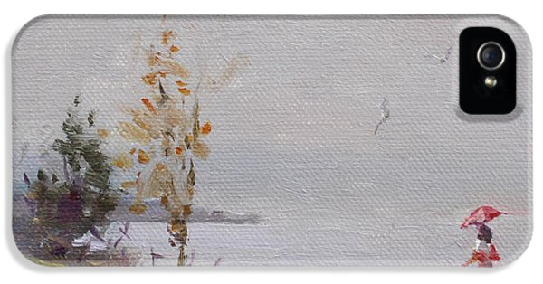 Seagull iPhone 5s Case - Fog And Rain At Gratwick Waterfront Park by Ylli Haruni