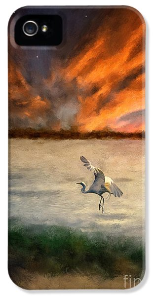 For Just This One Moment IPhone 5s Case by Lois Bryan