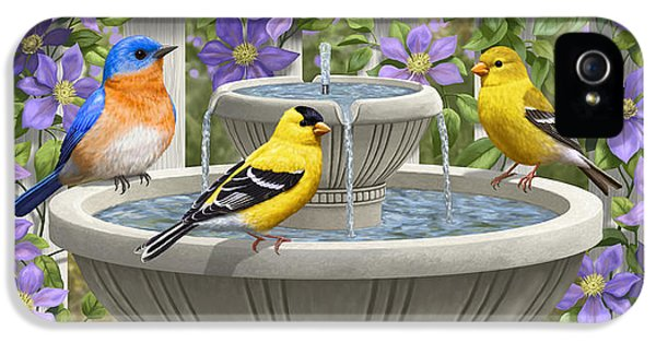 Fountain Festivities - Birds And Birdbath Painting IPhone 5s Case by Crista Forest
