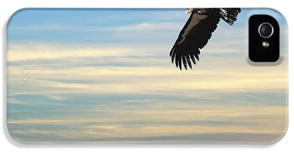 Free To Fly Again - California Condor IPhone 5s Case