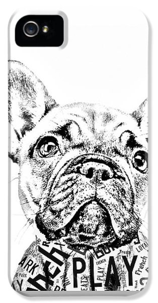 French Bulldog Portrait IPhone 5s Case