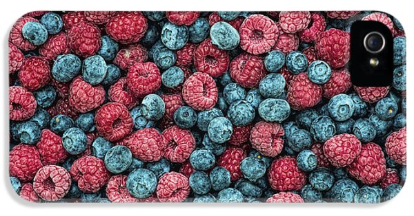 Frozen Berries IPhone 5s Case by Tim Gainey