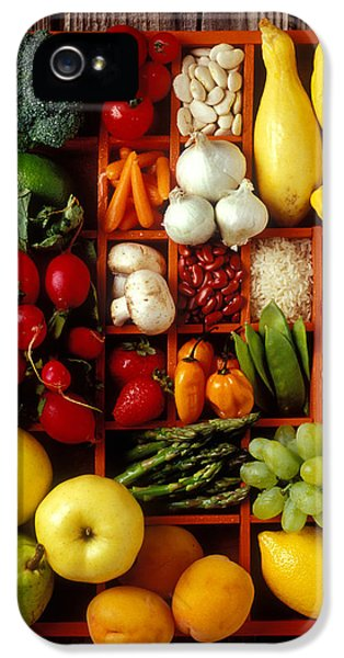 Fruits And Vegetables In Compartments IPhone 5s Case by Garry Gay