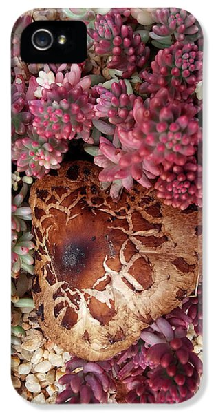 Fungus And Succulents IPhone 5s Case