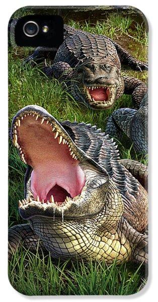 Gator Aid IPhone 5s Case