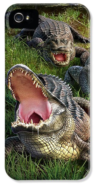Alligator iPhone 5s Case - Gator Aid by Jerry LoFaro